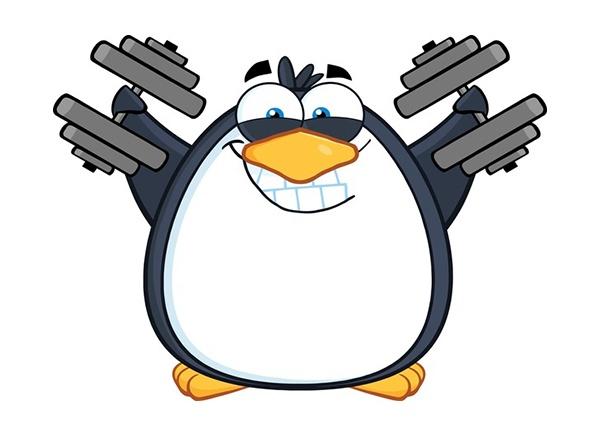 google-penguin-everflux-compressed.jpg