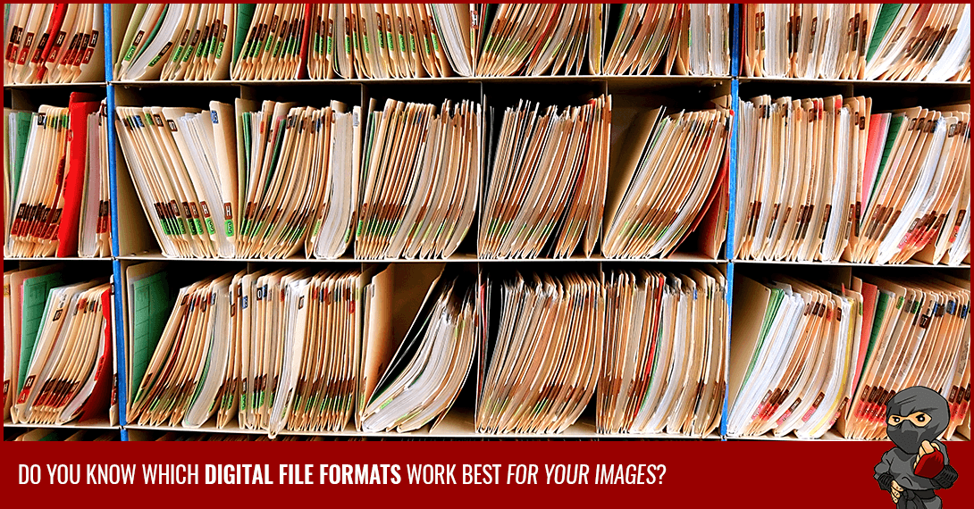 How to Choose the Right Digital File Formats for Your Images [Infographic]